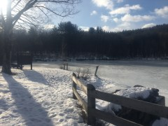 Hart's Pond, covered in a layer of ice.