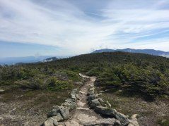 Cannon and Franconia Ridge peeking out in the distance.