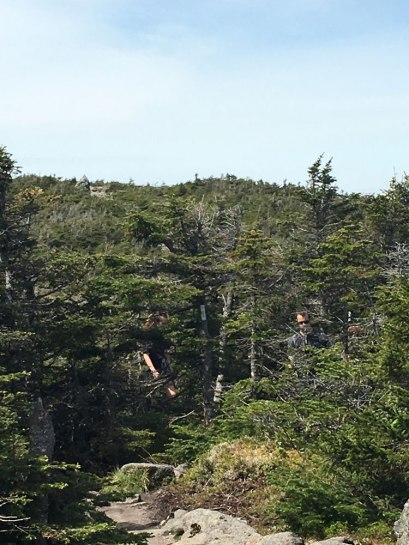 Looking back toward South Kinsman summit from Kinsman Ridge.