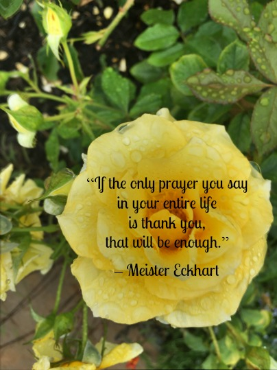 Quote - Prayer Thank You by Meister Eckhart