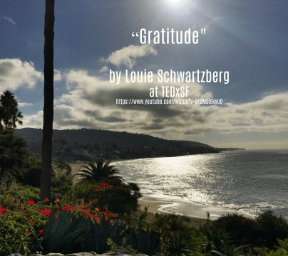 Song - Gratitude by Louie Schwartzberg