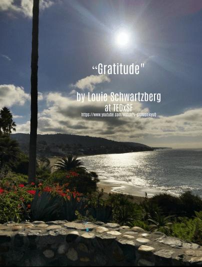 Song - Gratitude by Louie Schwartzberg