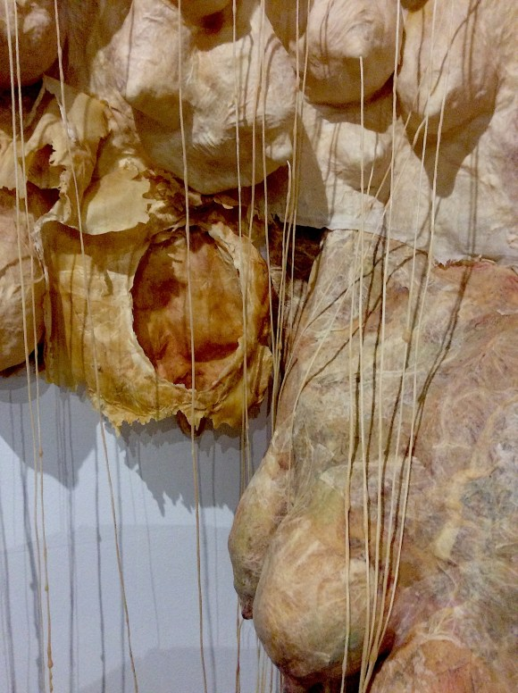 SPOM boobscape, 2017, The Animal Museum detail of inverted boobscape