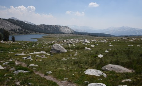 Boulder-strewn alpine meadow