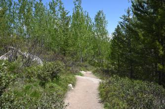 Start of the Taggart Lake Trail