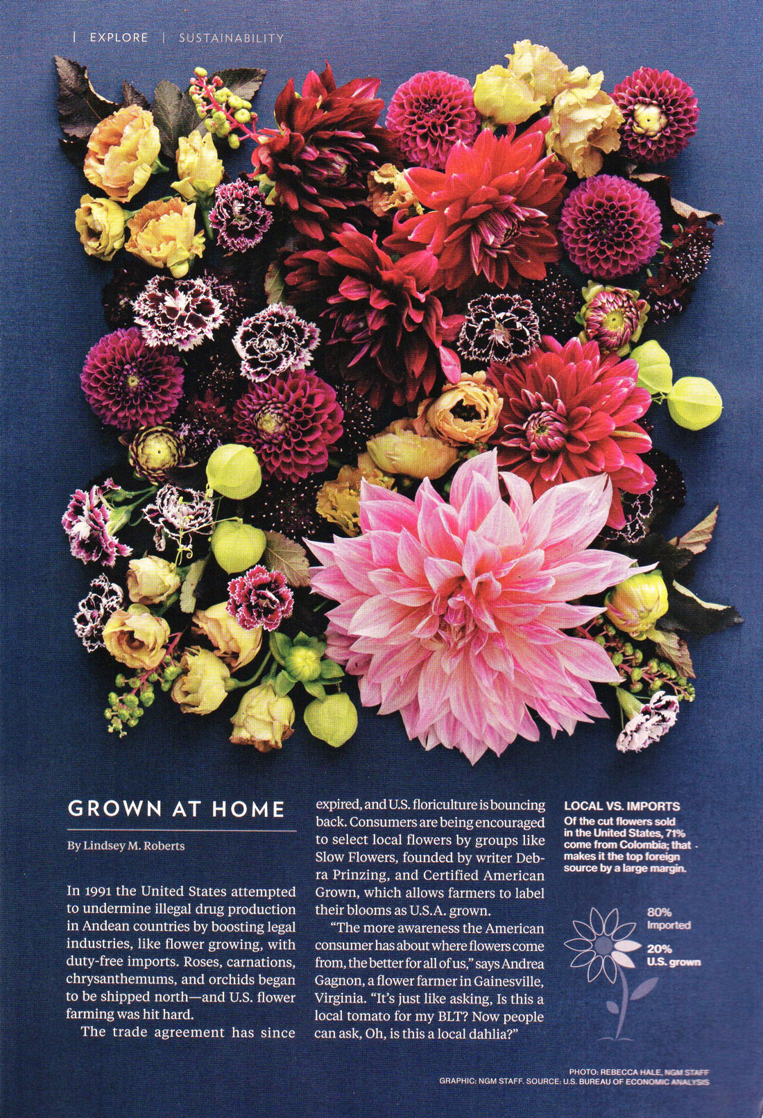 National Geographic - Grown at Home - November 2017, flowers by LynnVale Studios
