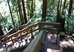 Baden-Powell Trail, Lynn Valley
