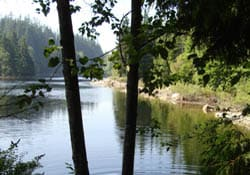 Rice Lake, Lynn Valley