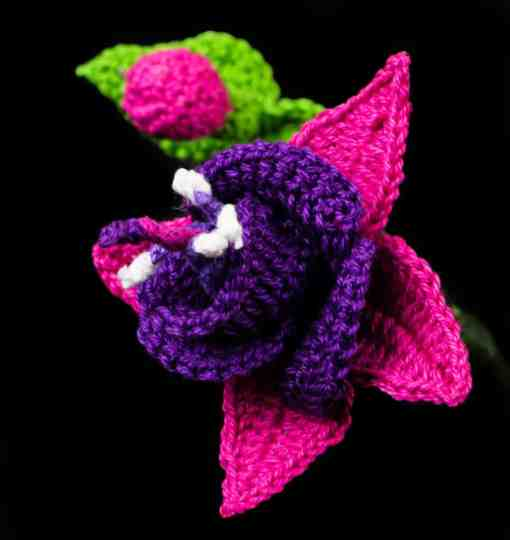 Fuchsia Flower Crochet