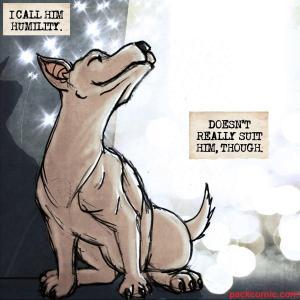 pack humility chihuahua mutt kickstarter lynsey g