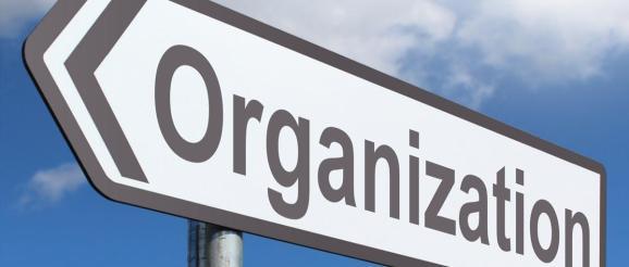 organization outline lynsey g