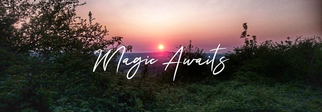 Lyn Thurman - Magic Awaits