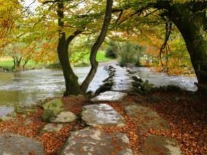 explore-tarr-steps