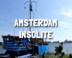 Am-Insolite