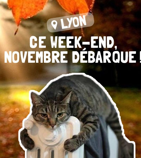 Bons plans du weekend