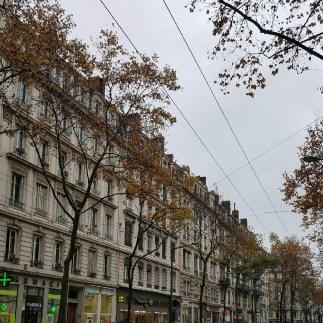avenue-jj