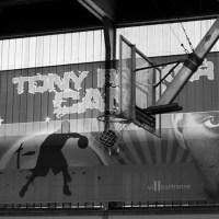 Tony Parker Camp 2014