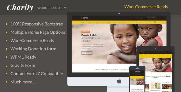 Charity: Nonprofit/NGO/Fundraising WordPress Theme