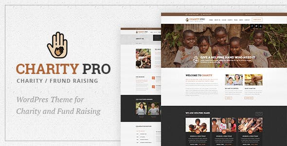 Charity Pro : Charity and Fund Raising WordPress Theme