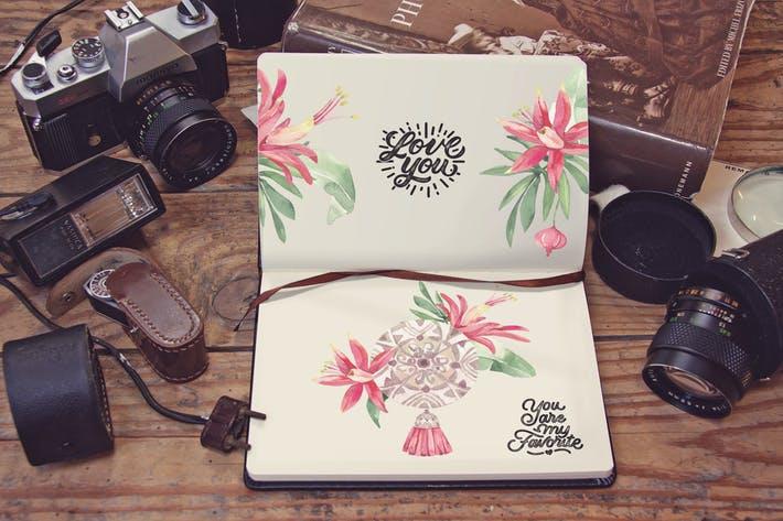 Pocket Notebook Lens