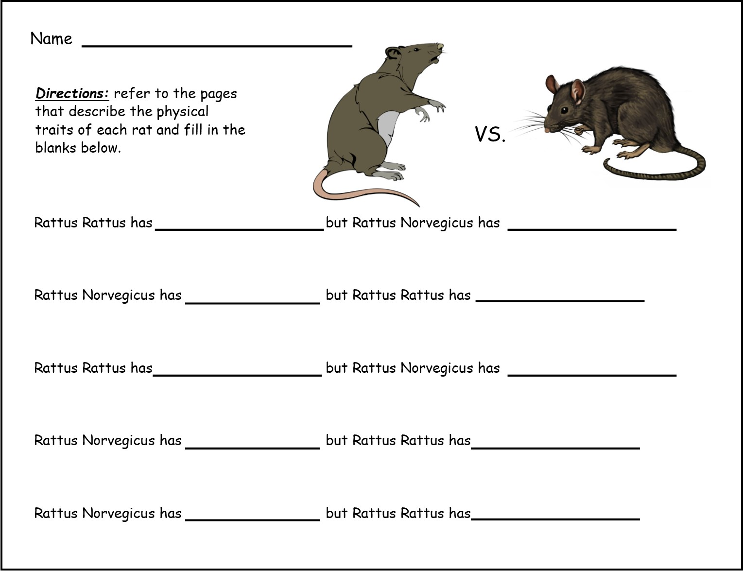 My Book About Bats And Rats Grades K 3 Lyric Power