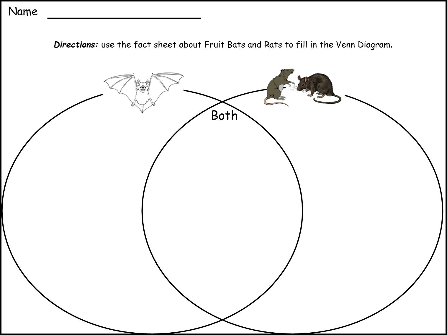 My Book About Bats And Rats Grades K 3 Lyric Power