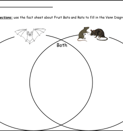 47 pages of captivating activities that kids from kindergarten through 3rd grade are certain to enjoy includes spelling pages two venn diagram activities  [ 1515 x 1134 Pixel ]