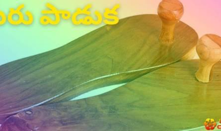 guru paduka lyrics in telugu with meaning, benefits, pdf and mp3 song