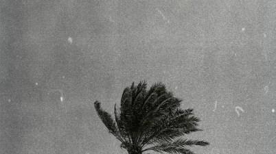 Drey Beatz – Riddim Tropicana Lyrics