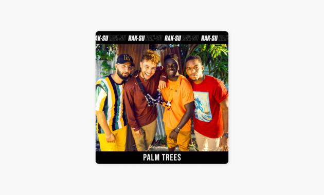 Rak-Su - Palm Trees lyrics