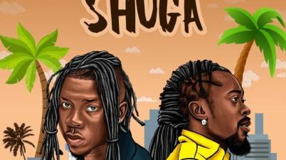 STONEBWOY - Shuga Lyrics