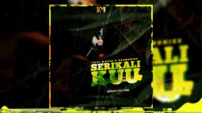 Paul Maker x Harmonize - Serikali Kuu Lyrics