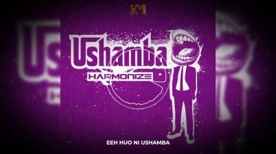 Harmonize - Ushamba Lyrics