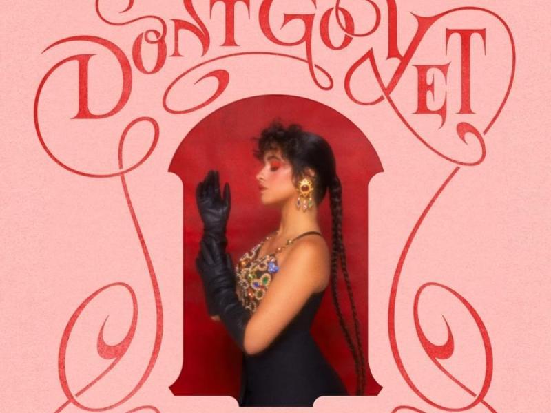 Camila Cabello - Don't Go Yet Lyrics