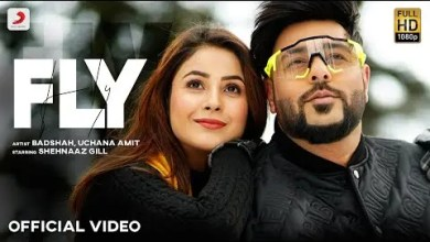 Photo of Fly Lyrics | Badshah | Shehnaaz Gill | Uchana Amit