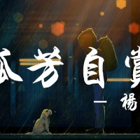 孤芳自賞 Pinyin Lyrics And English Translation