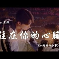 住在你的心臟 Pinyin Lyrics And English Translation