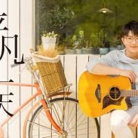 平凡的一天 Pinyin Lyrics And English Translation