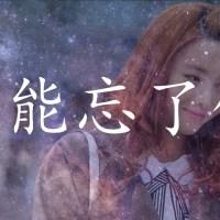 怎麼能忘了 Pinyin Lyrics And English Translation
