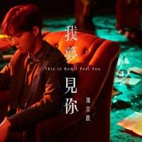 我夢見你 Pinyin Lyrics And English Translation