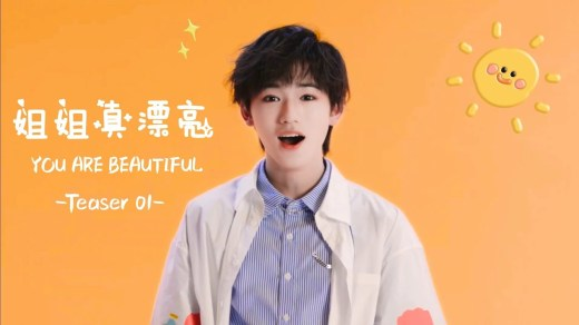 姐姐真漂亮 Pinyin Lyrics And English Translation