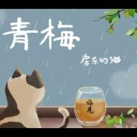 青梅 Pinyin Lyrics And English Translation