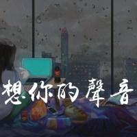 是想你的聲音啊 Pinyin Lyrics And English Translation