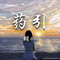 藥引 Pinyin Lyriccs And English Translation