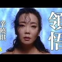 領悟 Pinyin Lyrics And English Translation