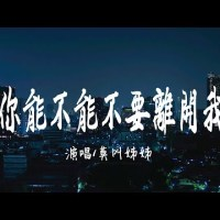 你能不能不要離開我 Pinyin Lyrics And English Translation