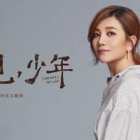再見 少年 Pinyin Lyrics And English Translation