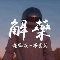 解藥 Pinyin Lyrics And English Translation