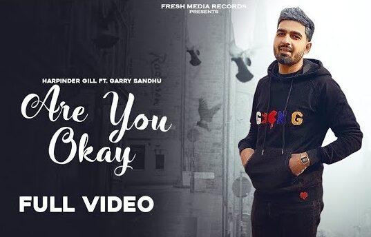आर यु ओके Are You Ok Lyrics In Hindi