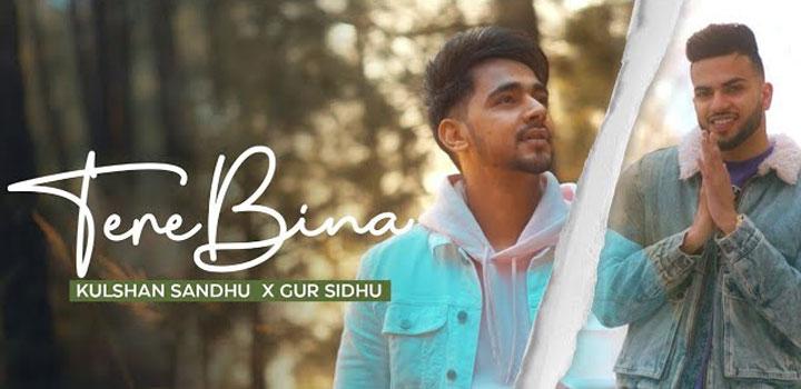 तेरे बिना Tere Bina Lyrics In Hindi